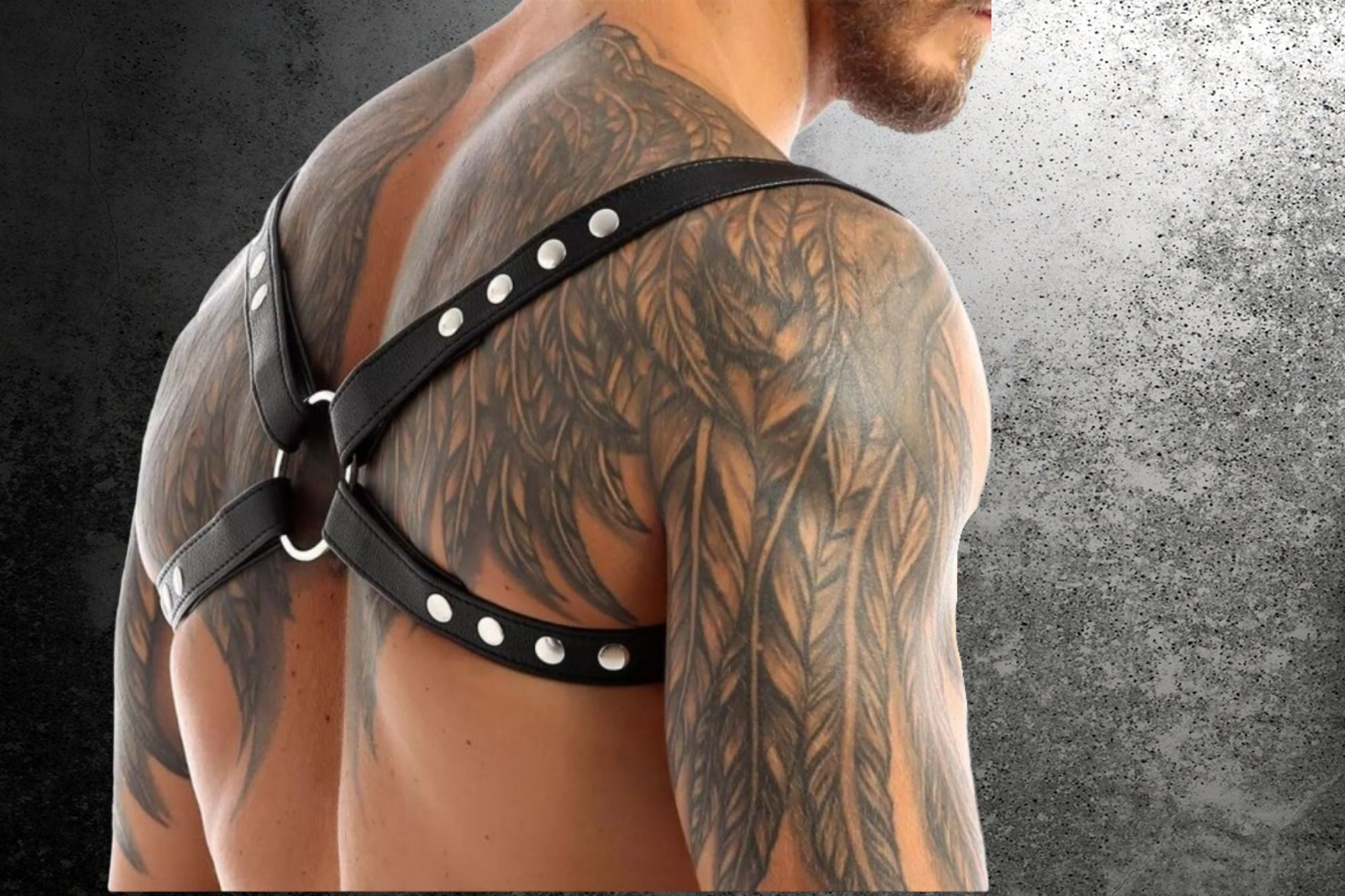 Gay Harness 101: Advice & Recommendations For First-Timers Exploring Boundaries